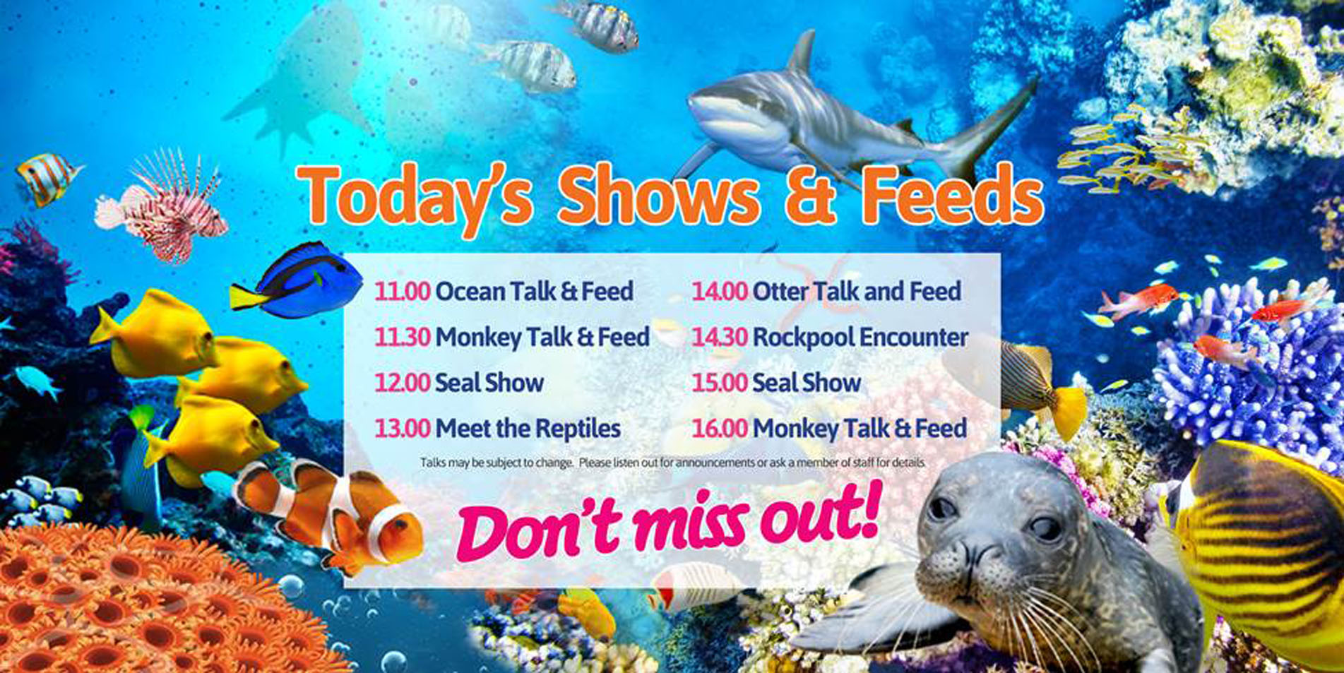 Blue Reef Aquarium Tynemouth